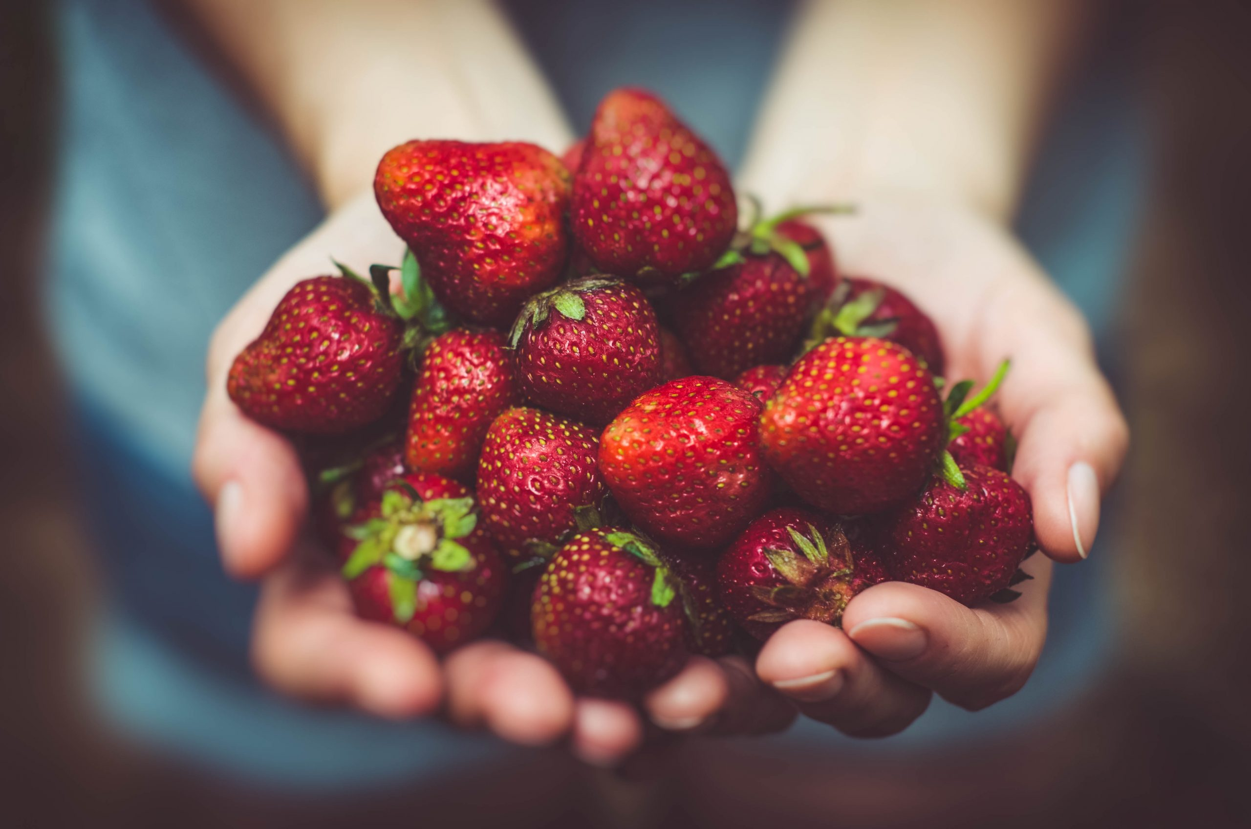 φρούτα φράουλες
