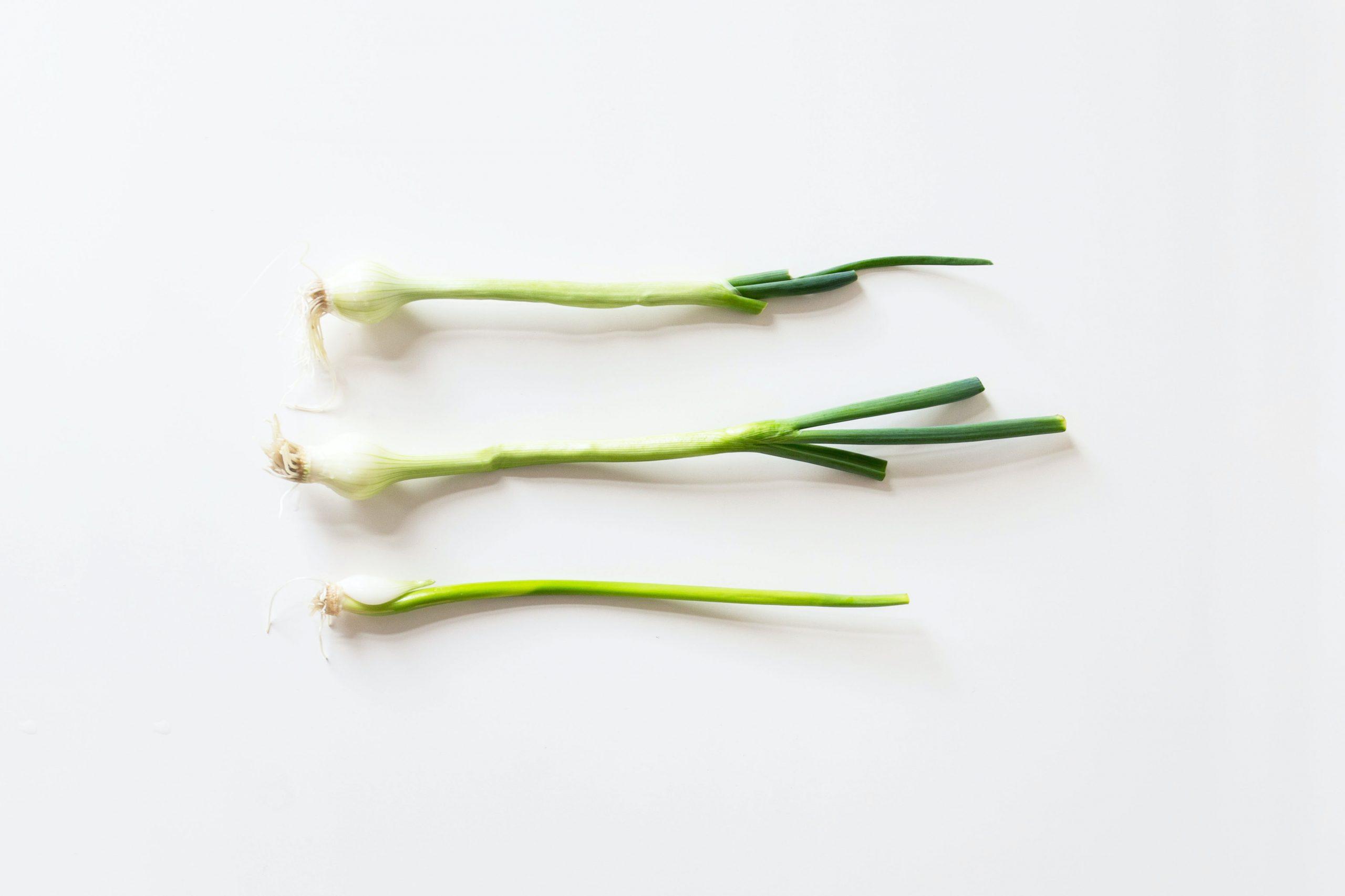 λαχανικά φρέσκο κρεμμύδι