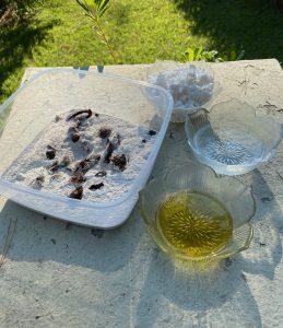 υλικά για νηστίσιμο τυροπιτάκι