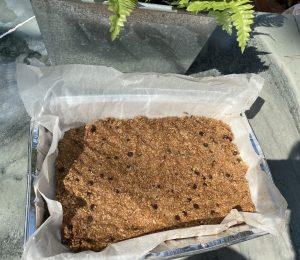 ζύμη μπάρα δημητριακών σε ταψί
